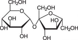 Disaccharide Sucrose