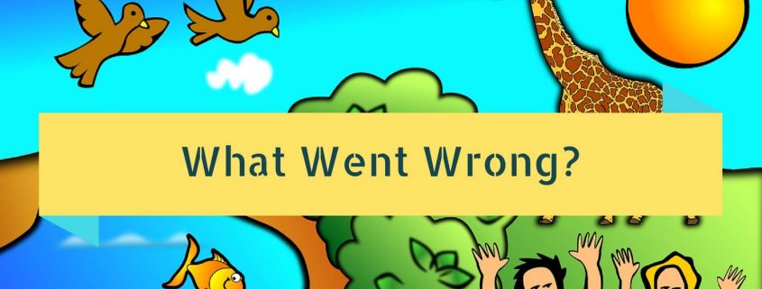 What Went Wrong-